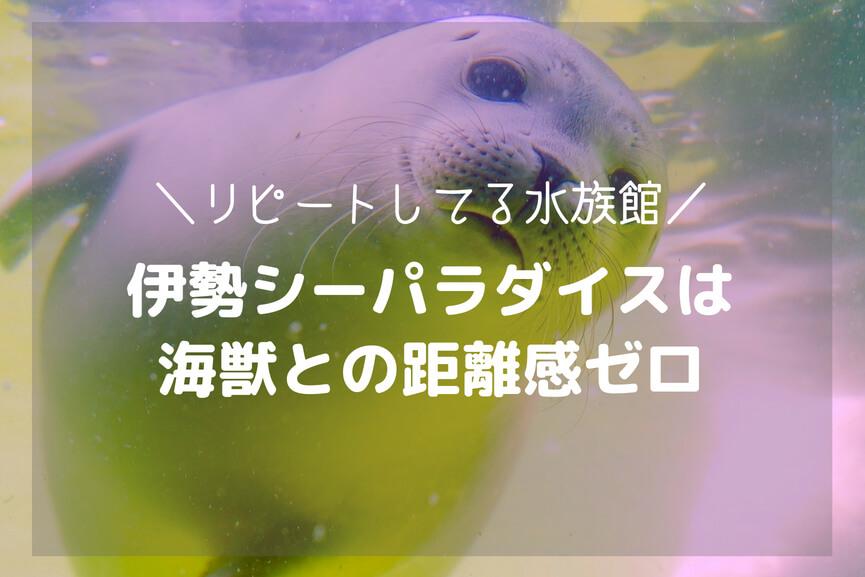 リピートしてる水族館:伊勢シーパラダイスは海獣との距離感ゼロ-アイキャッチ